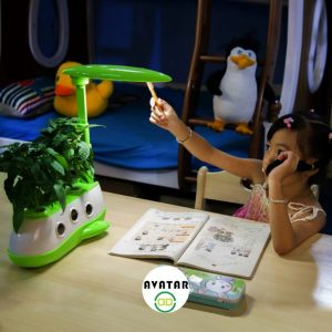 Hydroponic Grow Systems
